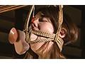 「緊縛浣腸夫人 藍川美夏」のサンプル画像7